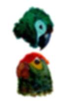 Water color bird study_J.jpg