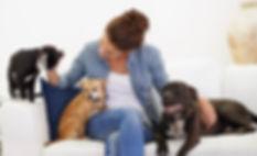 Choosing_Pet_Sitter_For_Your_Dog.jpg
