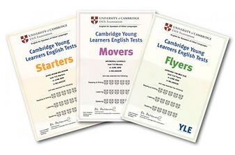 сертифиакаты йанг.png