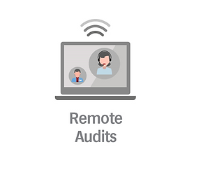 Remote Audits.PNG