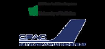 logo-hsg.png