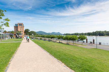 Blick über den Rhein und das Siebengebirge