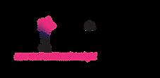 wizsight logo
