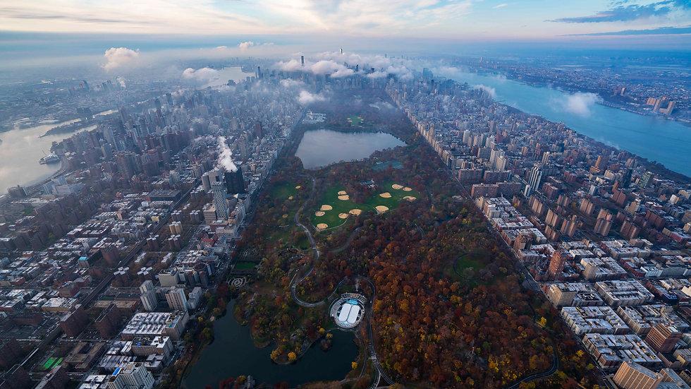 Park Life, Central Park, NYC: 2018