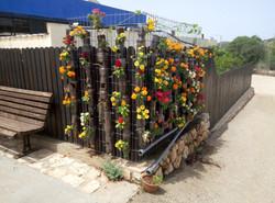 קיר צבעוני עם בקבוקים ופרחי העונה