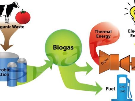 מתקנים מוסדיים להפיכת פסולת אורגנית לביוגז .