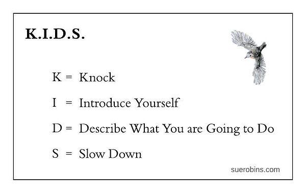 BEV Diagrams - KIDS (1).jpeg
