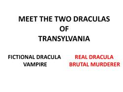 Hemet Library Foundation-Halloween in Transvylvania 10-4-2013 Master_Page_03