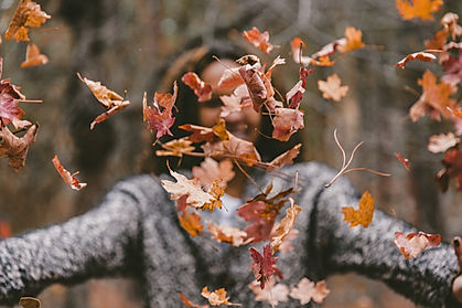 fall_cgt.jpg