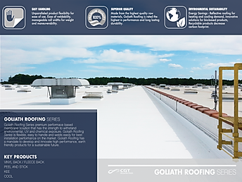 GOLIATH ROOFING.png