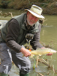 wild-fly-fishing-in-the-karoo-indigenous-yellow-fish.jpg