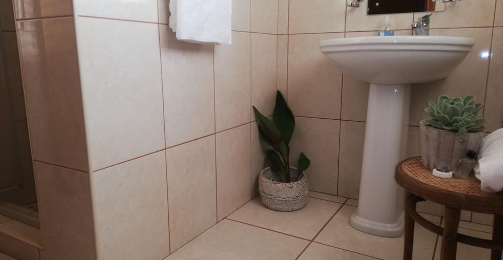 4.-1-on-scott-bathroom.jpg