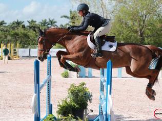 2 new young horses go to Lauren Crooks