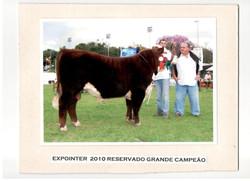 EXPOINTER_2010_-_RESERVADO_GRANDE_CAMPEÃO
