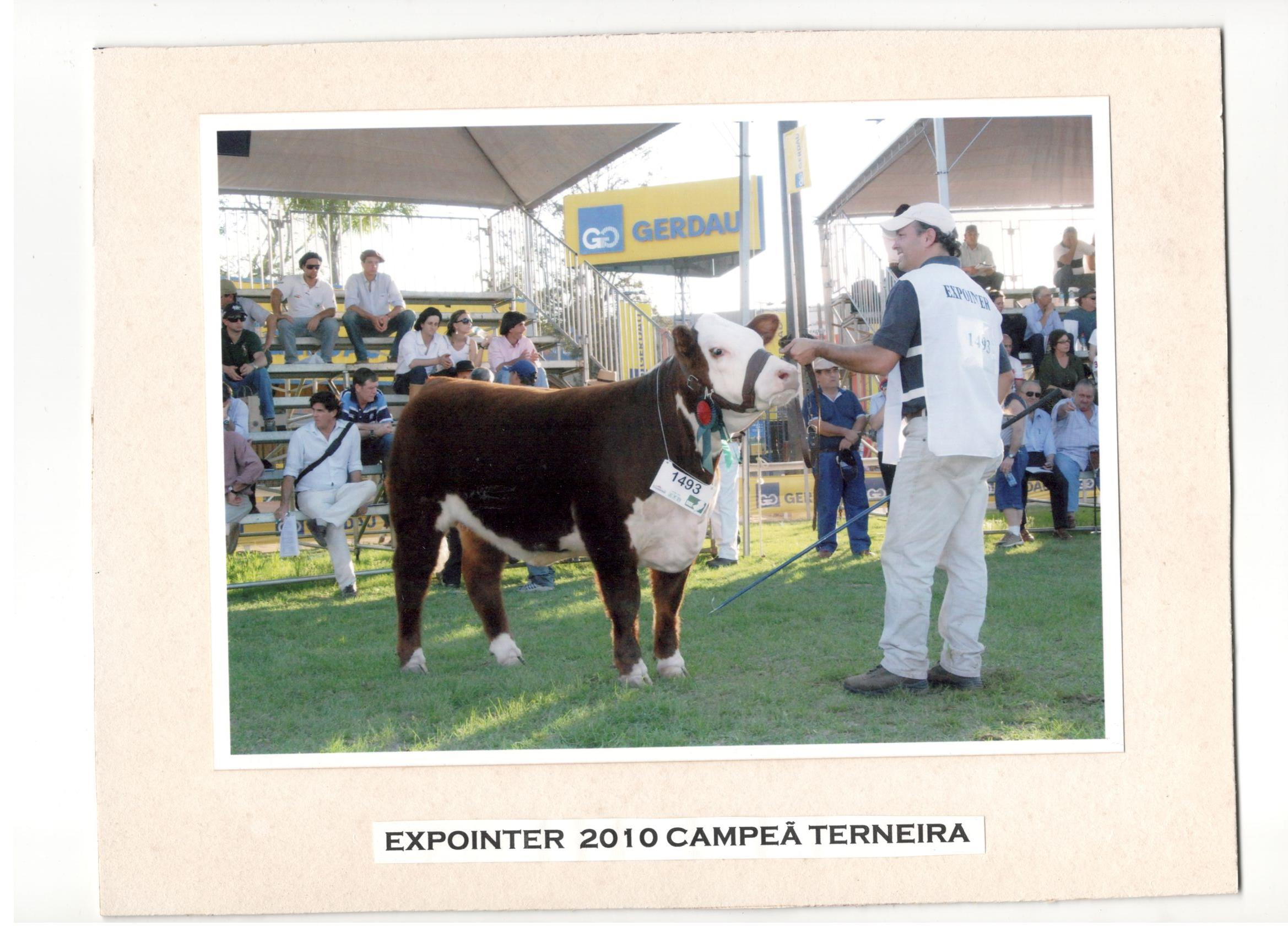 EXPOINTER_2010_-_CAMPEÃ_TERNEIRA