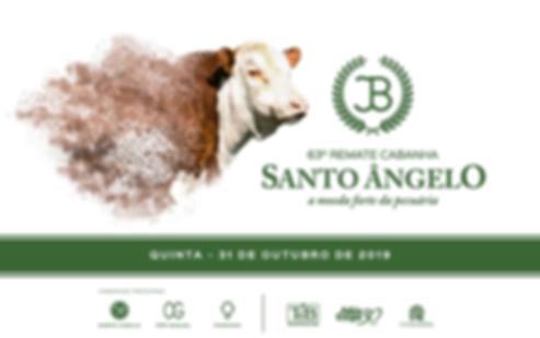 SANTO ANGELO-01.png