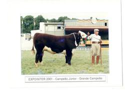 EXPOINTER_2001-_CAMPEÃO_JR_-_GRANDE_CAMPEÃO