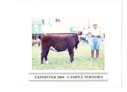 EXPOINTER_2004_-_CAMPEÃ_TERNEIRA