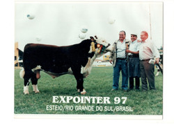EXPOINTER 97