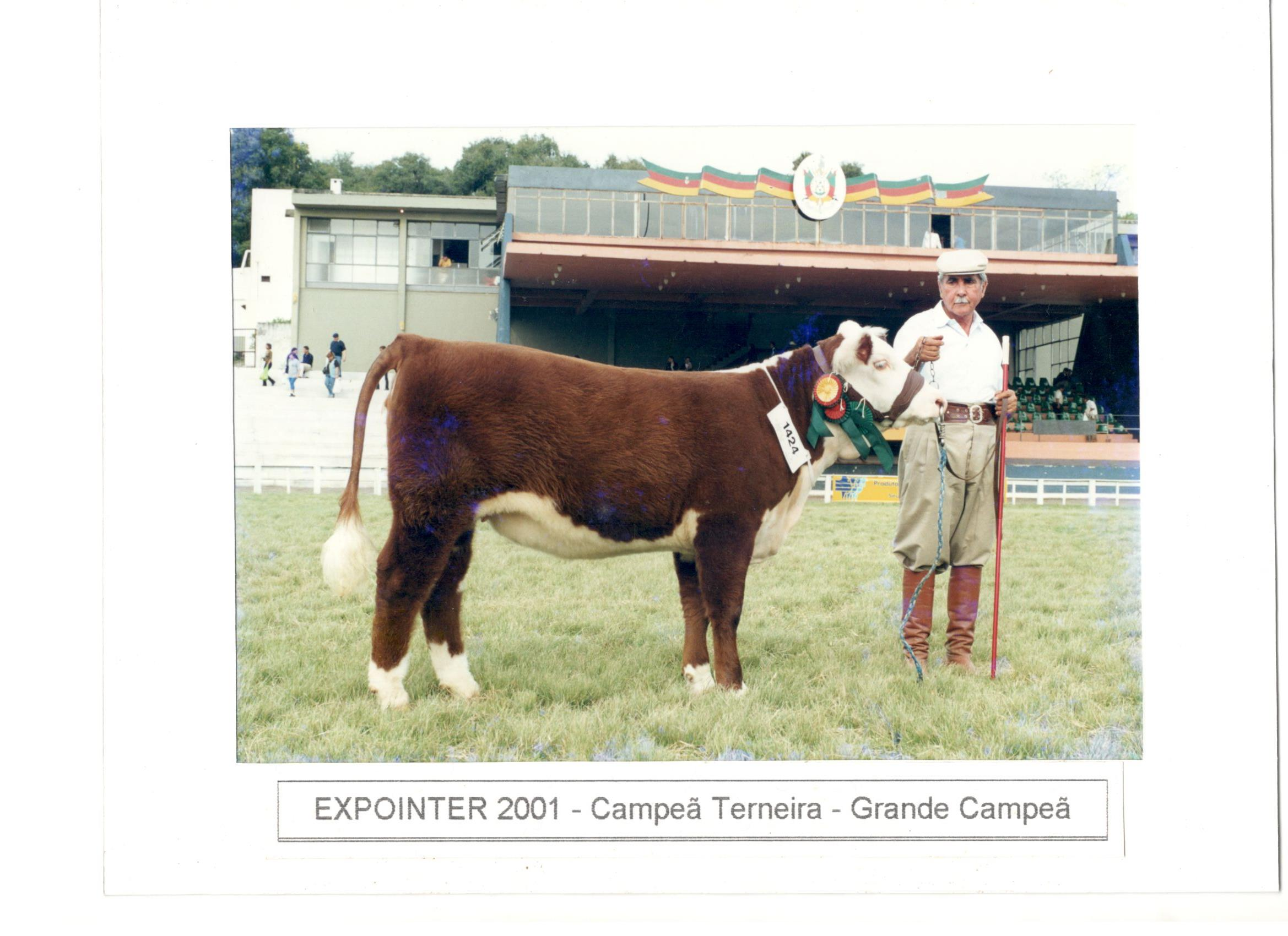 EXPOINTER_2001-_CAMPEÃ_TERNEIRA