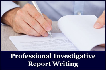 Professional Report Writing Services.jpg