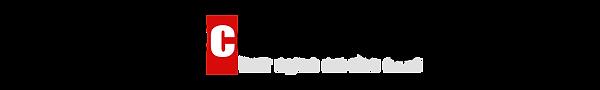 Logo-BG-1.png