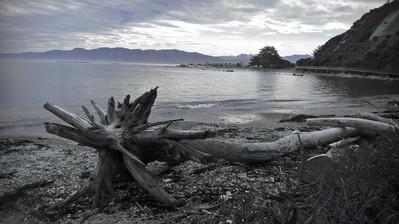 Urok Nowej Zelandii polega m.in. na jej