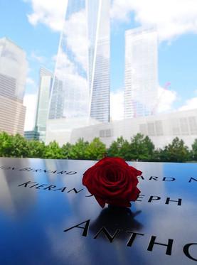 Czerwona róża na pomniku ofiar 11 wrześn