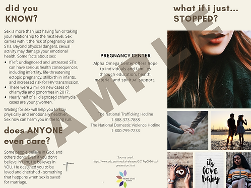 Customized What if I just Stopped Brochure