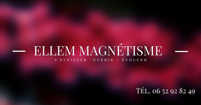 Ellem_magnétisme-2.png