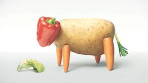 Moins de viande ? Le guide complet des protéines végétales indispensables