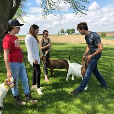 Meat Goat Project Workshop