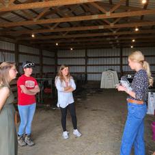 Poultry Project Workshop