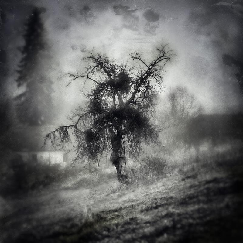 La sorcière de Nyárádmagyarós