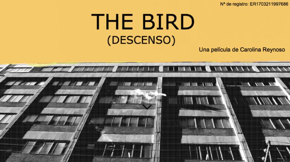 Portada The Bird 2.png