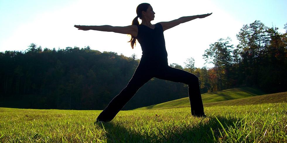 Open Level Vinyasa Yoga