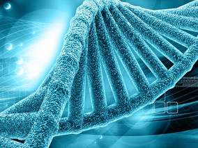 New Combination of CFTR Mutations Found in Chinese Siblings With CF