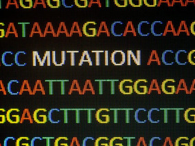 Gene Mutations Linked to Other Lung Diseases May Contribute to Bronchiectasis, Study Suggests