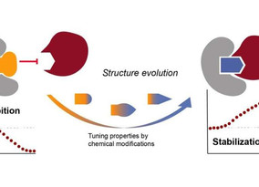 The search for molecular glue in targeted disease control