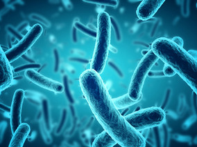 #ECFS2018 – AB-PA01, with Antibiotics, Shows Promise in Treating Drug-resistant Lung Infections in C