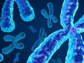 Are intestinal organoids the key to developing personalized therapy for cystic fibrosis?