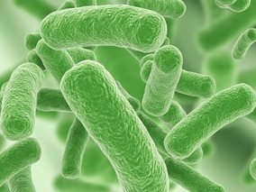 CF Foundation Grant Supports Testing of CSA-131 Against Resistant Bacteria