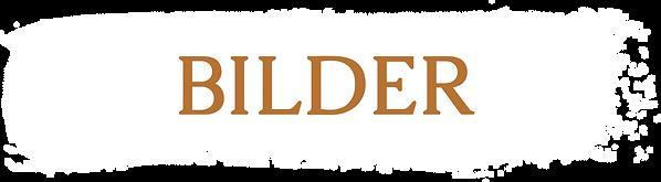 BILDER.png