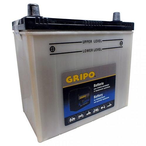 Batterie haute-performance NS60LS Gripo
