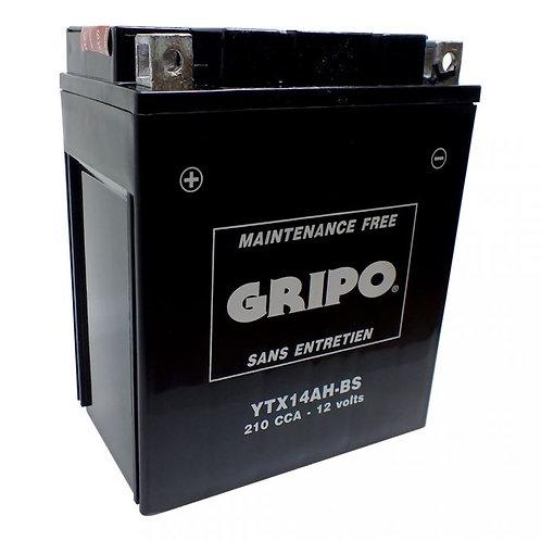Batterie MF sans entretien YTX14AH-BS Gripo