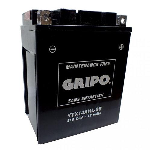 Batterie MF sans entretien YTX14AHL-BS Gripo