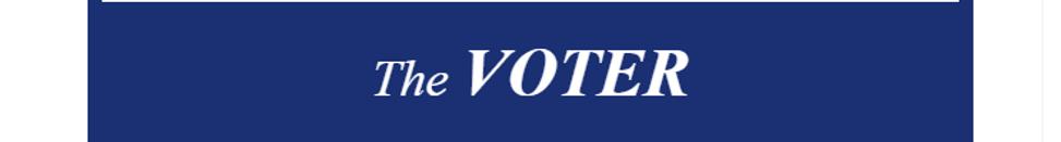 VOTER-header2.png