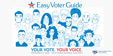 Easy Voter Guide Online image.png