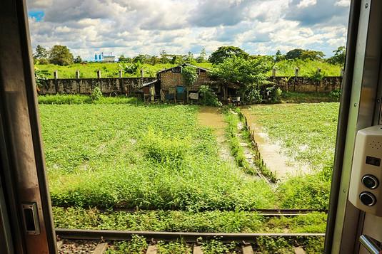 Circle Train Views