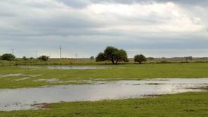 Registro de lluvias del día domingo